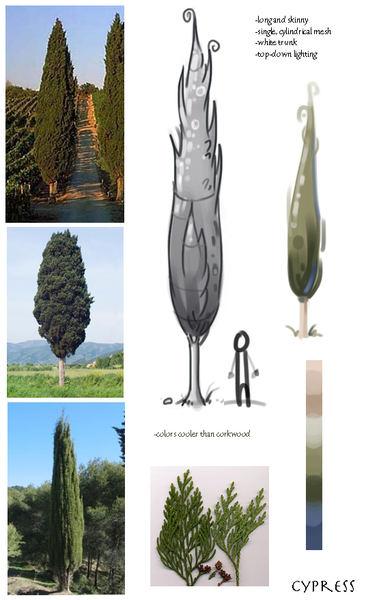 cypressstudy