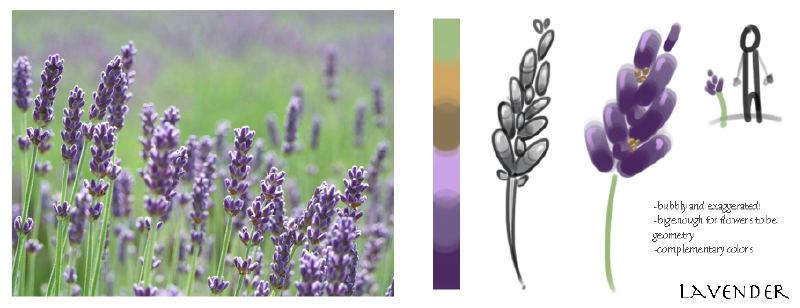 lavenderstudy
