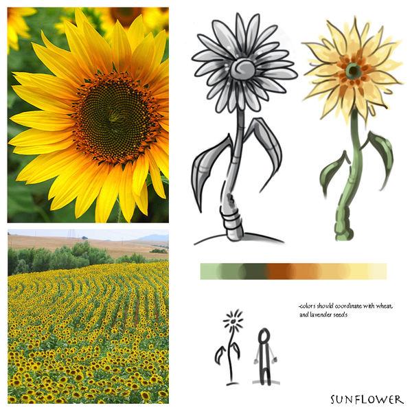 sunflowerstudy